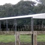 nuevo techo sobre manga
