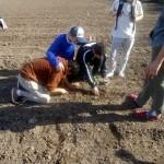 examinando suelos