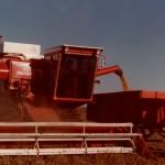 Cosecha soja 1986
