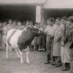 Promoción 1961 Cabaña El Orden 1960