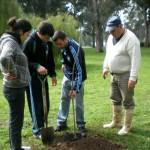 110º aniversario-Plantación árboles
