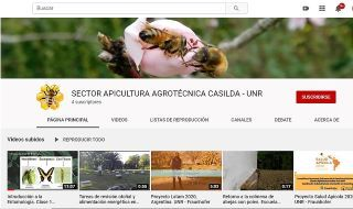 CANAL DE YOUTUBE SECTOR APICULTURA