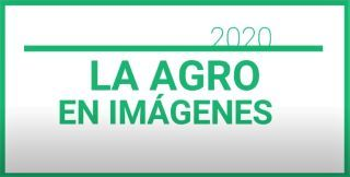SALUDOS DE FIN DE AÑO 2020